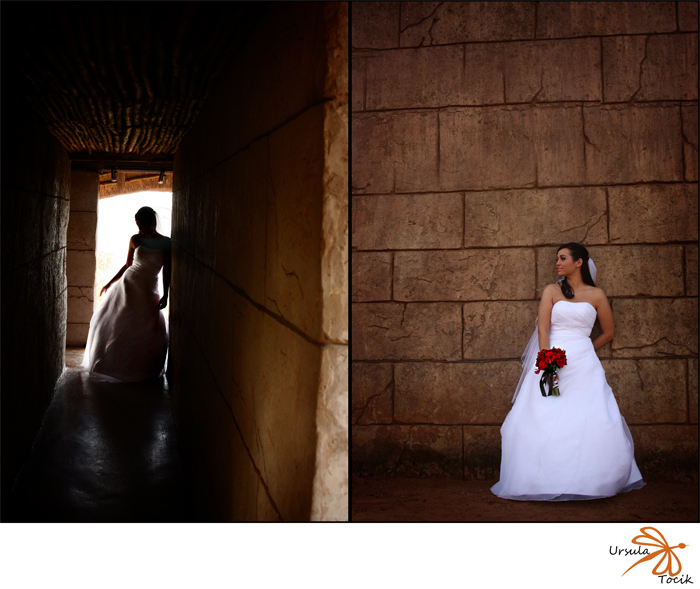Adriana and Jason Wedding Blog